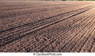 champ, labouré, agriculture, cultivé