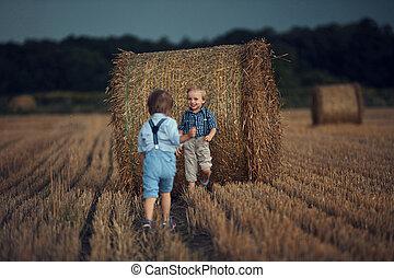 champ maïs, frères, portrait, jouer, gai