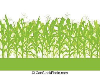 champ, maïs, vecteur, fond