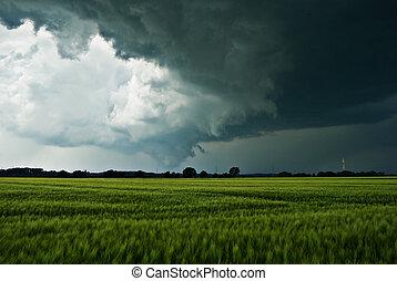 champ, nuages, sur, thundery