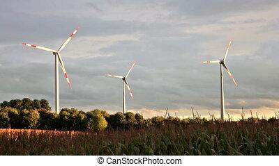 champ, opération, turbines, coucher soleil, vent