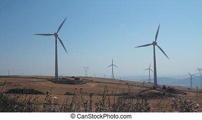 champ, panoramique, turbines, vent