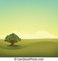 champ, paysage