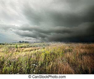 champ, sur, nuages, orage