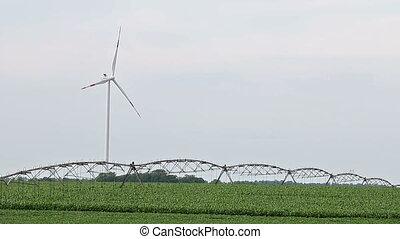 champ, turbine, vent