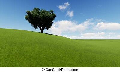 champ, unique, herbe, arbre