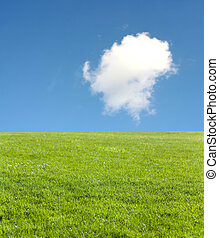 champ vert, bleu, ciel