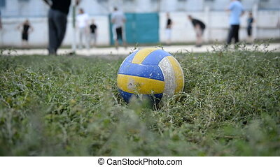 champ, volley-ball, duri, sports