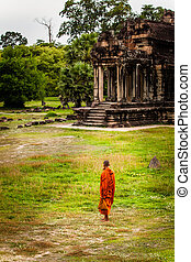 champ, wat, stands, angkor, moine