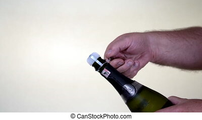 Champagne Bottle - wire cage removed from cheap plastic cork.