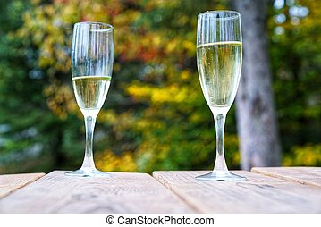 Champagne for two in the forest
