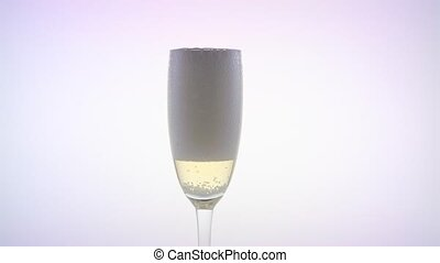 Champagne poured into glass. White background - Champagne...