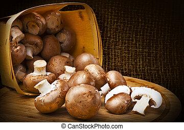 champignon, hongos, con, marrón, variedad