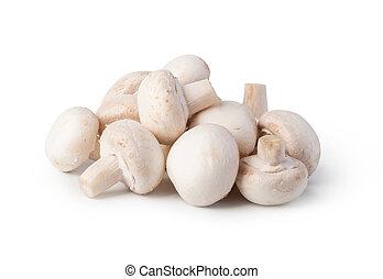 Champignon - mushrooms isolated on white background