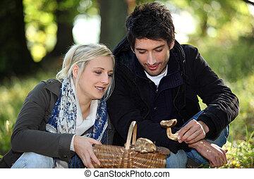 champignons, couple, cueillette