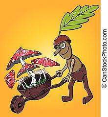 champignons, cueillette, chêne, forêt, homme