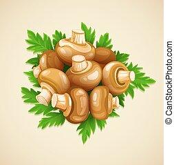 champignons, nourriture organique, persil, champignons, vert