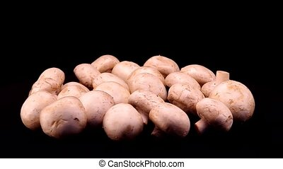 Champignons on black table. - Champignons on black table are...