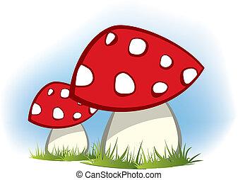 champignons, rouges