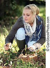 champignons sauvages, rassemblement, femme