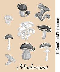 champignons, toxique, affiche, comestible, forêt