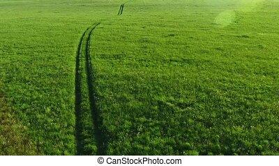 champs, aérien, route, vue