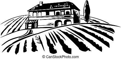 champs, hills., vendange, villa, illustration, vignoble, vecteur, paysage rural
