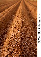 champs labourés, sol, argile, rouges, agriculture