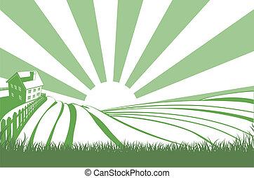 champs, sur, soleil, colline