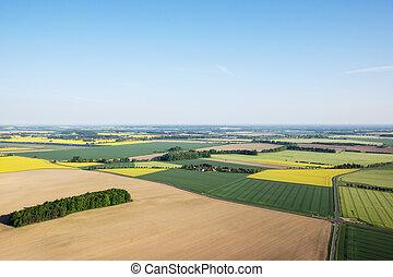 champs, vue, aérien, matin
