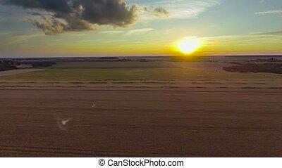 champs, vue aérienne
