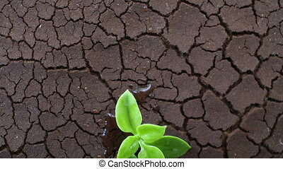 change., ground., robiony, afektowany, gleba, concept.,...