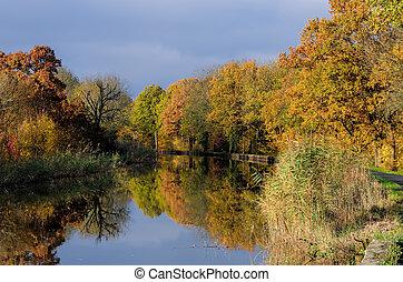 channel et autumn forest