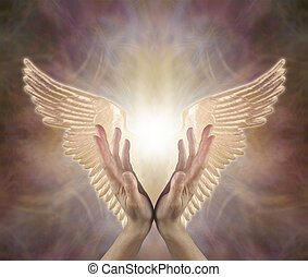 female hands reaching up with Golden Angel wings either side on a warm toned ethereal background with copy space above