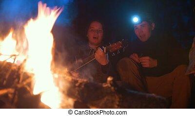 chant, jeune, guitare, bois, nuit, amis, jouer, feu, chansons