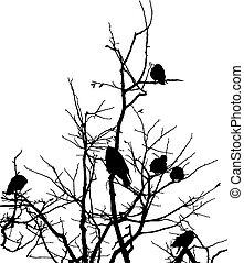 chanter victoire, branches, arbre