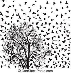 chanter victoire, troupeau, arbre, sur