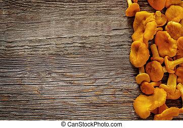 chanterelle mushrooms on a dark wood background. tinting. ...
