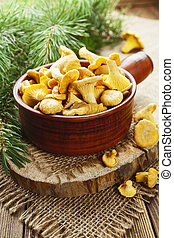 Chanterelles in a ceramic pot on the table