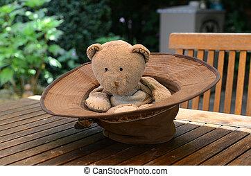 chapeau, teddy