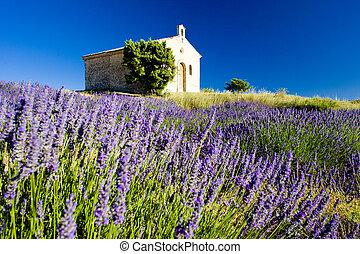 chapel with lavender field, Plateau de Valensole, Provence,...