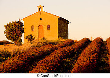 chapel with lavender field, Plateau de Valensole, Provence, ...