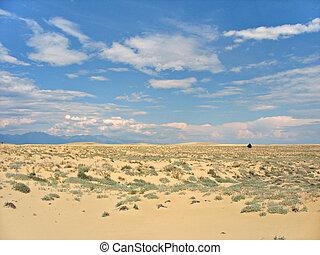 chara, paisaje., sands., desierto
