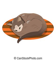 Character, brown cat sleeping on the rug, object on a white background
