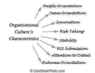 Characteristics of Organizational Culture