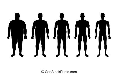 characterizing male silhouettes for different stages of body...