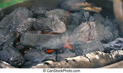 charbon, coal., incandescent