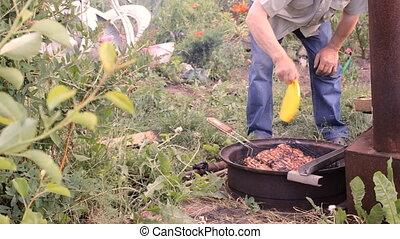 charbon de bois, extérieur, viande, gril, être, morceaux, poulet, frit