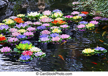 charca, budista, colorido, más, carpa, shanghai, artificial, agua, famoso, si, china, jade, lillies, buddha, templo, jufo