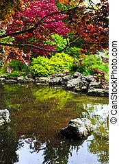 charca, en, jardín zen